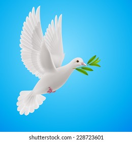 Raster version. Dove of peace flying with a green twig after flood on sky