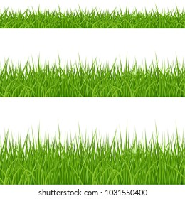 Raster version. Set of Green Grass Elements on White Background