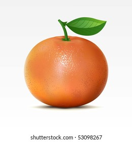 Raster version of vector grapefruit on a white background