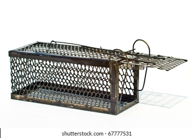 Rat cage white background.