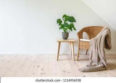 Rattan armchair with a blanket and a wooden table with a potted plant, fruit salad tree (Monstera deliciosa). Empty white wall in simple living room interior. Copy space
