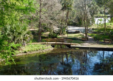 Ravine Gardens State Park, a Florida State Park in Palatka, Florida. Picnic areas, gardens, hiking trails, bridge and pond.