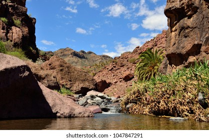 Ravine of Tirajana after the rains, Santa Lucia, Gran canaria, Canary islands