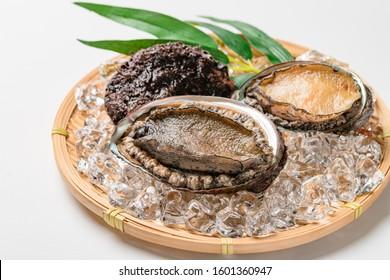 Raw abalone shellfish on white background