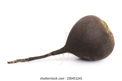 Raw black radish isolated on white