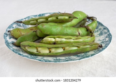 raw broadbeans on a white and green plate on a white backdrop horizontal