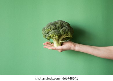 Raw broccoli in hand. Vegetarian food or diet concept.