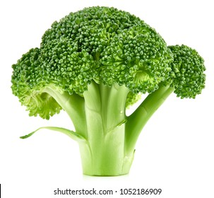 raw broccoli isolated on white background