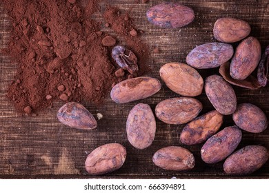 Raw cacao beans and cocoa powder on a rustic wooden background. Top view, close up