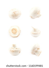 Raw champignon composition isolated over the white background, set of six different foreshortenings
