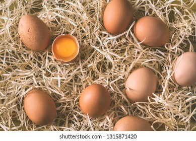 Raw chicken eggs in the hay: top view