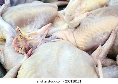 Raw chicken poultry ,Crude Hen