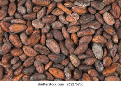 raw cocoa or cacao beans, top view,  background