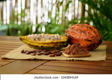 Raw cocoa pods, cacao beans and powder on wooden table
