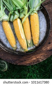 Raw corn in the garden on wooden background