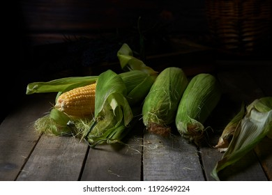 Raw corn on cobs on a dark rustic background