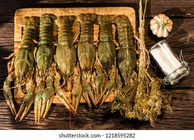 Raw crayfish with beer on wooden background