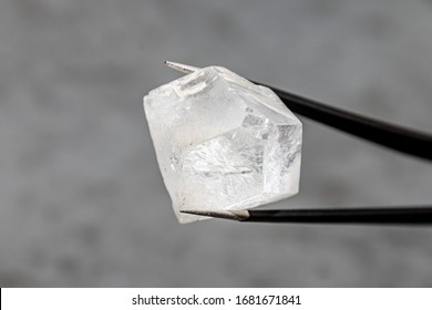 Raw diamond big dob held by tweezers in front of a grey surface