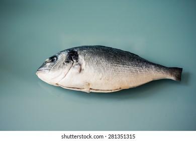 Raw dorado fish, gilthead bream or sea bream isolated on the glass background