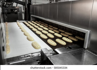 Raw dough bread on a conveyor before baking in an oven