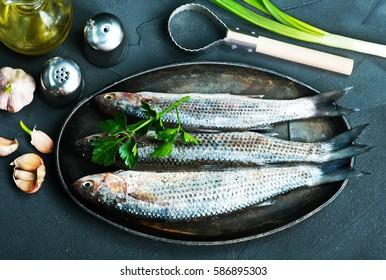 raw fish - Shutterstock ID 586895303