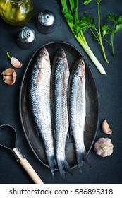 raw fish - Shutterstock ID 586895318