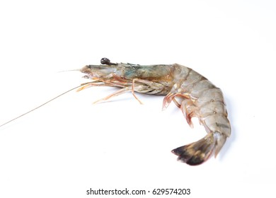 Raw food close up single shrimp with white background