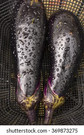 Raw and fresh eggplants with water droplets.
