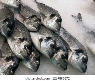 Raw fresh fish on ice