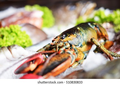 Raw, fresh lobster with other fish on ice.