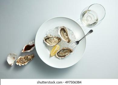 Raw fresh oyster shellfish