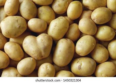 Raw fresh potatoes, full frame.
