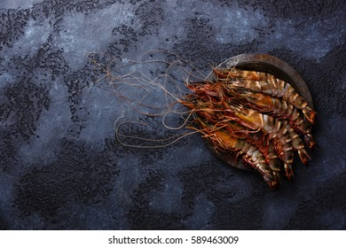 Raw fresh Tiger Prawn Shrimp in metal plate on black background copy space