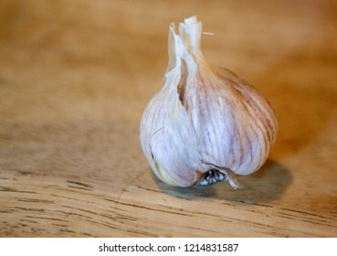 Raw garlic on wooden surface