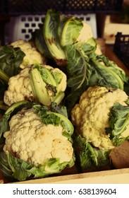 raw green cauliflower close up background photo on the market