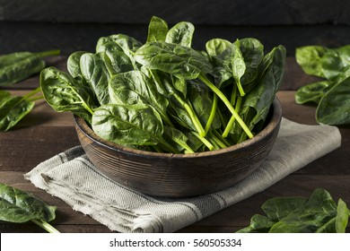 Raw Green Healthy Organic Spinach Ready to Eat