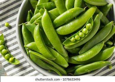 Raw Green Organic Snap Peas in a Bowl