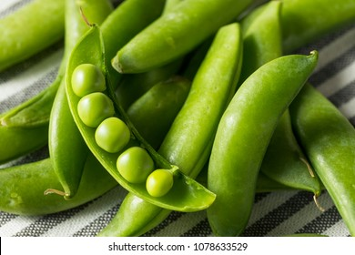 Raw Green Organic Snap Peas in a Bowl