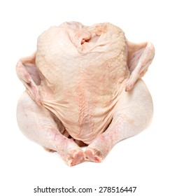 raw hen on a white background