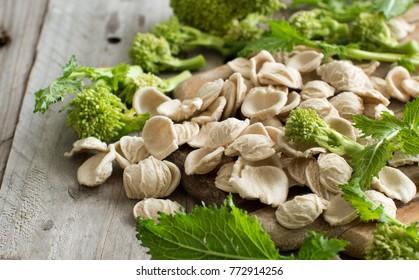 Raw homemade Orecchiette pasta and turnip greens close up