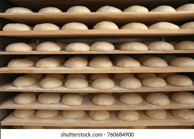 Raw loaves of bread on shelves in bakery