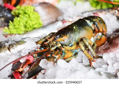 Raw lobster on ice with seafood.