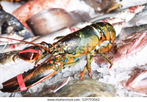 Raw lobster on ice with seafood