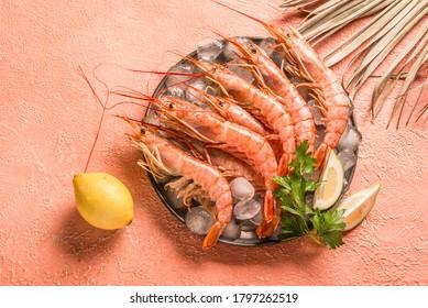 Raw ocean king prawns or jumbo shrimps copy space top view, monochromatic minimalism