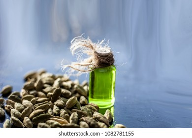Raw organic green cardamom or elaichi or Elettaria cardamomum or true cardamom with its essence on wooden surface used in many beverages as a flavoring liquid.