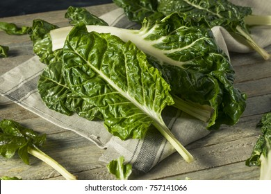 Raw Organic Green Swiss Chard Ready to Cook