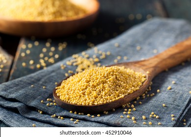 Raw Organic Healthy Millet in a Spoon