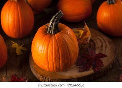 Raw Organic Pie Pumpkins Ready to Use