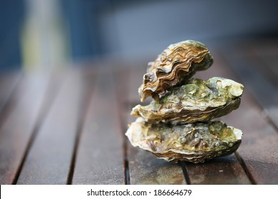 Raw oyster on wooden table with a close view