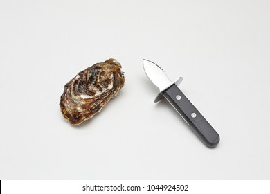Raw Oyster and Shucker Knife With Short Blade